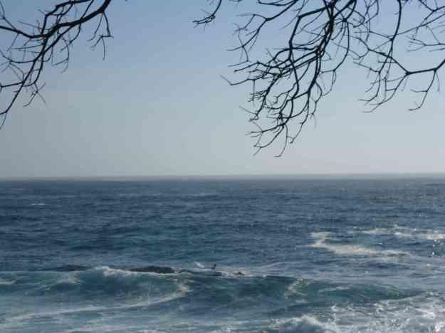 Sea of My Dreams